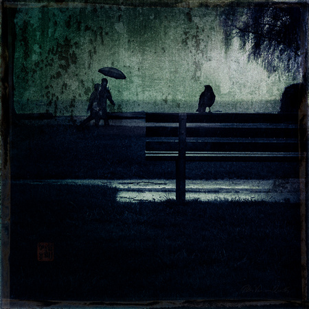 PH2468a folio DreamVision crow on park bench with pedestrian in rain -7241--5