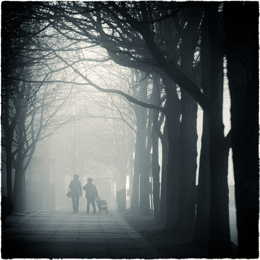 PH1920a pedestrians in urban fog sfx zf-4716