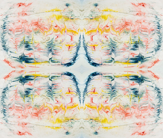 Ink Design Vibrant Feathers TIle ID197b